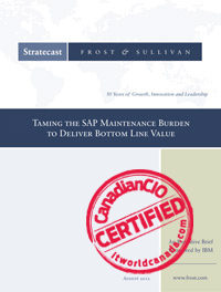 Taming the SAP Maintenance Burden to Deliver Bottom Line Value