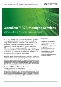 B2B Managed Services Solution Overview