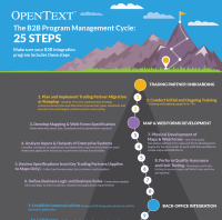 The B2B Program Management Cycle: 25  Steps