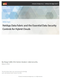NetApp Data Fabric and the Essential Data Security Controls for Hybrid Clouds