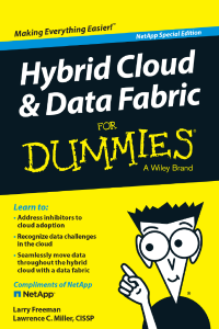 Hybrid Cloud & Data Fabric for Dummies: NetApp Special Edition