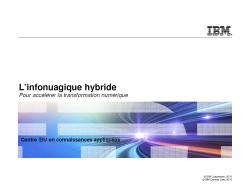 Système d'analytique IBM PureData N3001