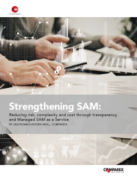 Strengthening SAM: Reducing risk, complexity and cost through transparency and Managed SAM as a Service