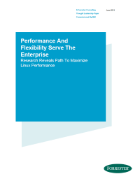 Performance And Flexibility Serve The Enterprise: Research Reveals Path To Maximize Linux Performance