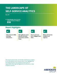 The Landscape of Self Service Analytics
