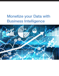 Monetize your Data with Business Intelligence