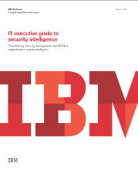 IT executive guide to security