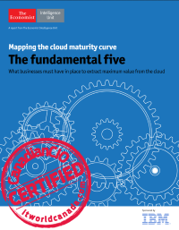 Mapping the cloud maturity curve.  The fundamental five.  What businesses must have in place to extract maximum value from the cloud.