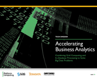 Accelerating Business Analytics