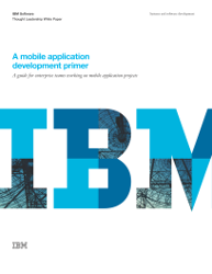 A mobile application development primer. A guide for enterprise teams working on mobile application projects