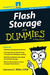 Flash Storage for Dummies