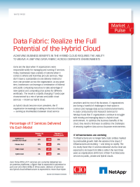 Data Fabric: Realize the Full Potential of the Hybrid Cloud
