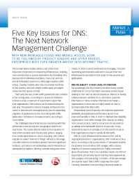 Five Key Issues for DNS: The Next Network Management Challenge
