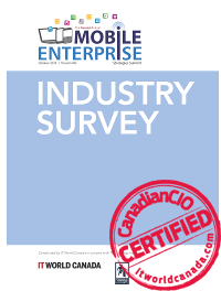 Mobile Enterprise Survey Report