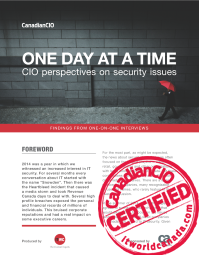 ONE DAY AT A TIME: CIO perspectives on security issues
